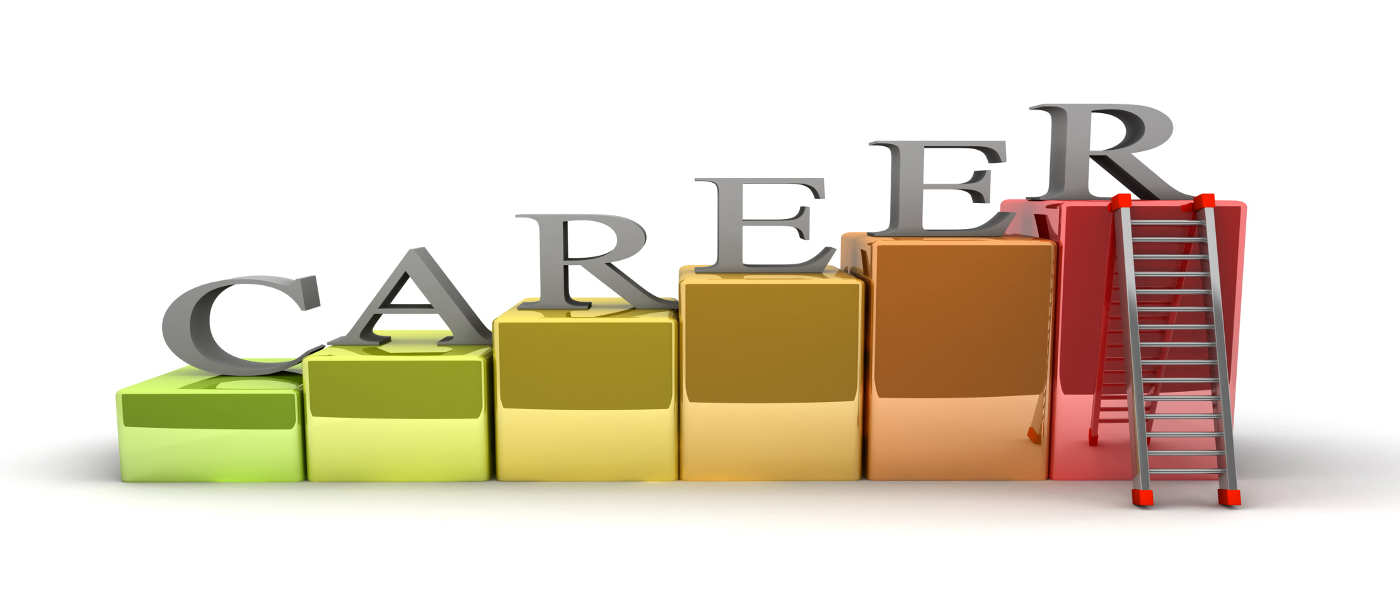Job Search - Fresher (0-3 years Experience)